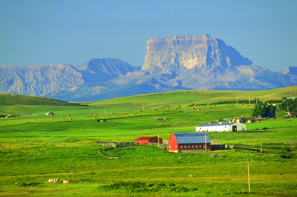 Cardston ALberta Travel
